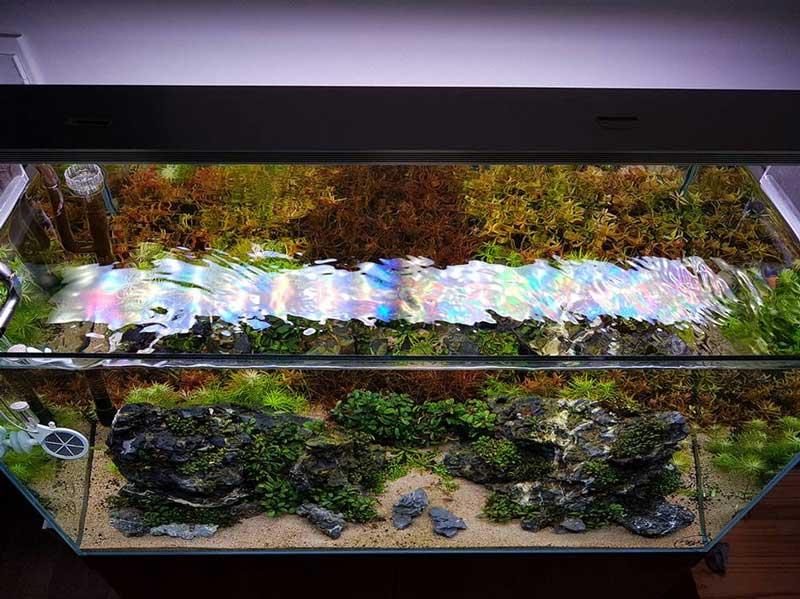 Aquascape in Home
