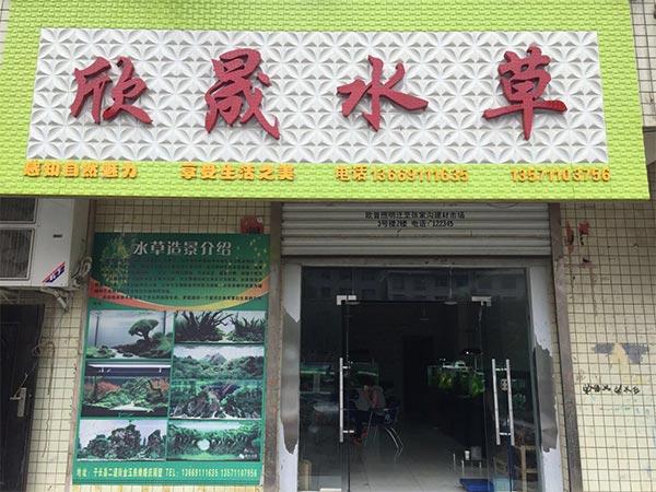 Shanxi Yanan