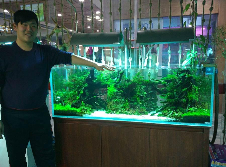 DICI Aquarium Distributor